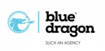 Blue Dragon Strategy & Concept