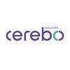 Cerebo Networks B.V.